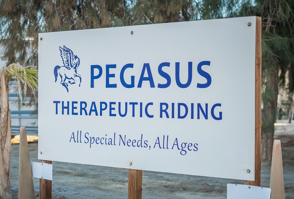 Pegasus-Sign-2
